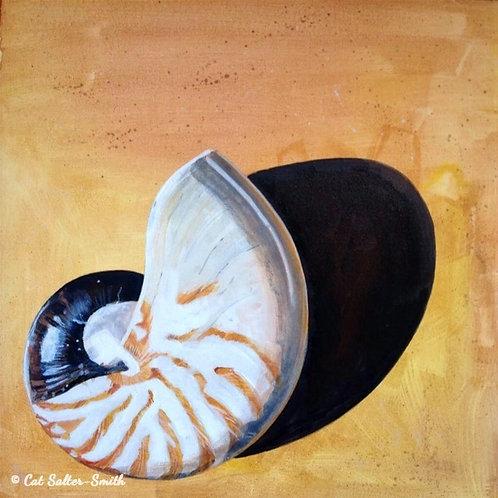 Nautilus balancing