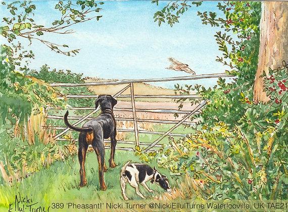 389 'Pheasant!' Nicki Turner @NickiEllulTurne, UK
