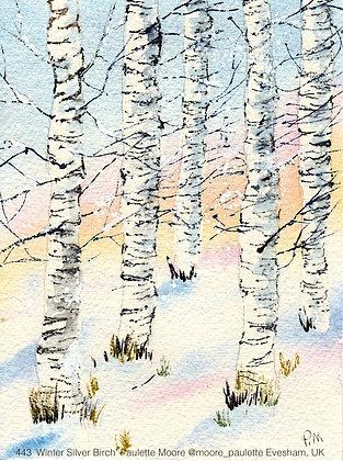 443 'Winter Silver Birch' Paulette Moore @moore_paulette Evesham, UK
