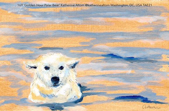 169 'Golden Hour Polar Bear' Katherine Altom @katherinealtom, USA TAE21