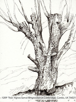 1209 'Tree' Agnes Szmat @AgnesSzmat Cambridge, Cambs, UK TAE21