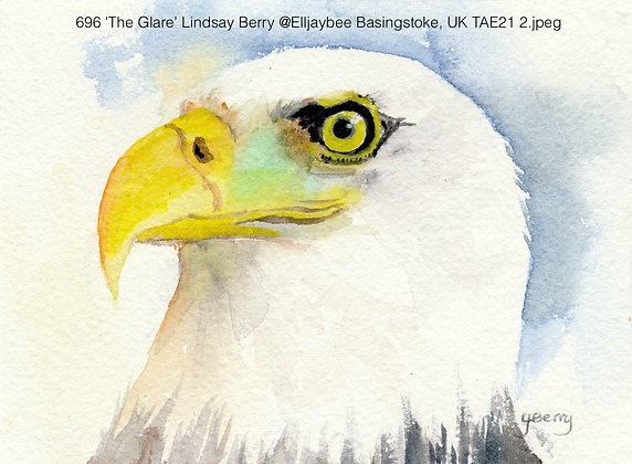 696 'The Glare' Lindsay Berry @Elljaybee Basingstoke, UK TAE21
