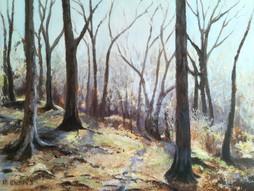 Dumbleton Wood