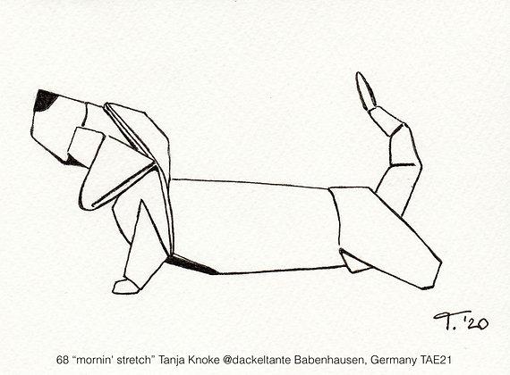 """68 """"mornin' stretch"""" Tanja Knoke @dackeltante Babenhausen, Germany TAE21"""