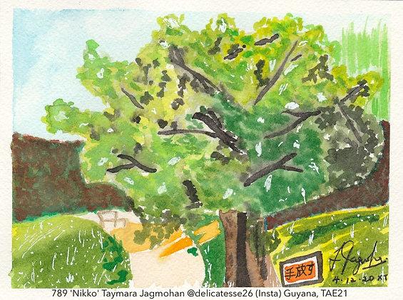 789 'Nikko' Taymara Jagmohan @delicatesse26 (Insta) Guyana, TAE21