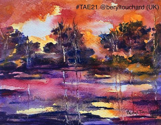 230 'Sunset in Waterlogged Field' Beryl Touchard @beryltouchard UK