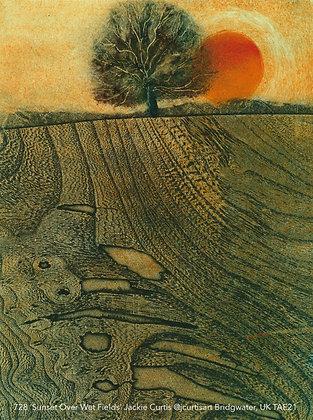 728 'Sunset Over Wet Fields' Jackie Curtis @jcurtisart Bridgwater, UK TAE21