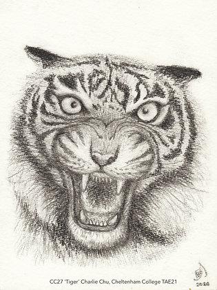 CC27 'Tiger' Charlie Chu, Cheltenham College TAE21