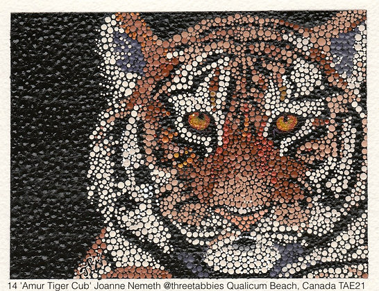 14 'Amur Tiger Cub' Joanne Nemeth @threetabbies Qualicum Beach, Canada TAE21
