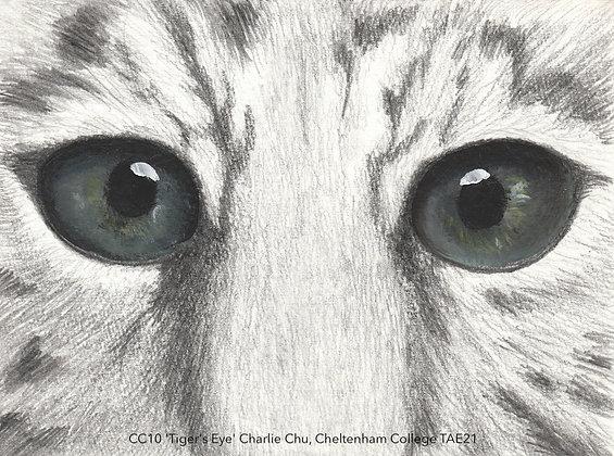 CC10 'Tiger's Eye' Charlie Chu, Cheltenham College TAE21