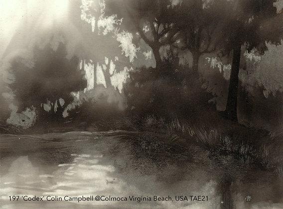 197 'Codex' Colin Campbell @Colmoca Virginia Beach, USA TAE21