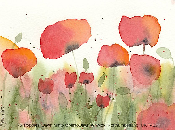 176 'Poppies' Dawn Minto @MintoDawn Northumberland, UK