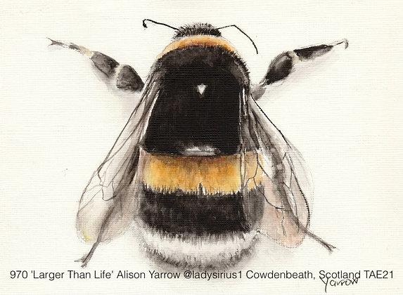 970 'Larger Than Life' Alison Yarrow @ladysirius1 Cowdenbeath, Scotland TAE21