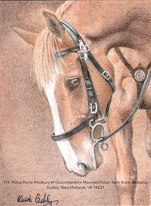 174 'Police Horse Prestbury' Keith Boldy @ktboldy Dudley, West Midlands TAE21