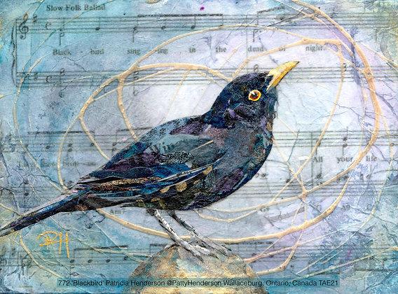 772 'Blackbird' Patricia Henderson @PattyHenderson, Ontario, Canada