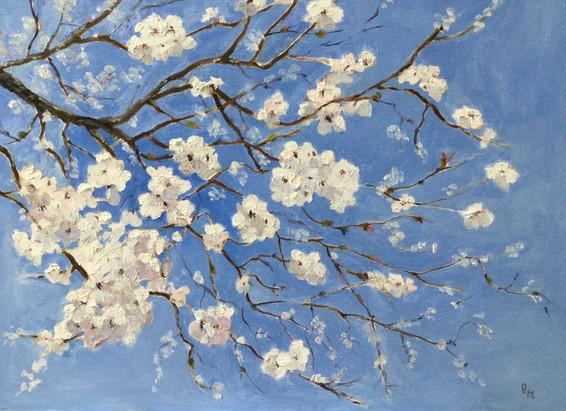 "Spring Blossom Oils 16 x14"" Paulette Moo"