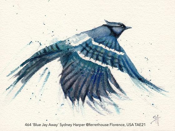 464 'Blue Jay Away' Sydney Harper @ferrethouse Florence, USA TAE21