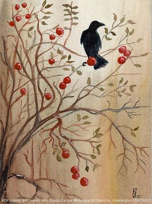 429 'Apples and Raven' Keri Grassl-Ziegler @Hooliganlili Washington USA