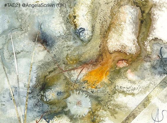 113 'Towards Woodland Edge' Angela Scrivin @AngelaScrivin Gloucester, UK