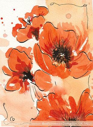 107 'Poppies' Carol Dawson @carlonoswad Darlington, UK TAE21