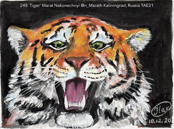 248 'Tiger' Marat Nakonechnyi @n_Marath Kaliningrad, Russia TAE21