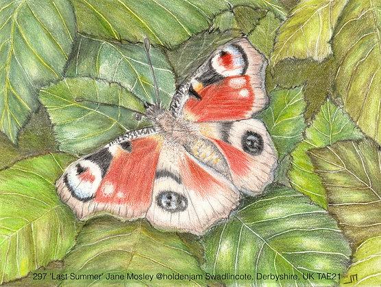 297 'Last Summer' Jane Mosley @holdenjam Swadlincote, Derbyshire, UK TAE21