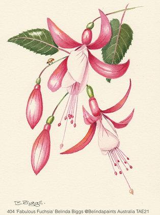 404 'Fabulous Fuchsia' Belinda Biggs @Belindapaints Central Coast, Australia TAE