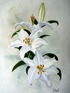 White lilies - Brian Pugh Watercolour.JP