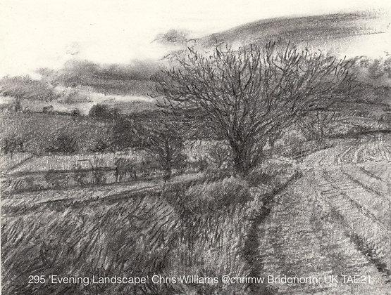 295 'Evening Landscape' Chris Williams @chrimw Bridgnorth, UK TAE21