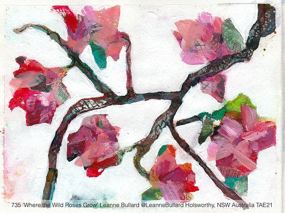 735 'Where the Wild Roses Grow' Leanne Bullard @LeanneBullard Australia TAE21