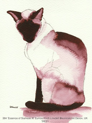 384 'Essence of Siamese XI' Eunice Knott-Linsdell @euniceknott Devon, UK