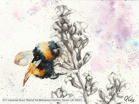 571 'Lavender Buzz' Rachel Toll @elidanza Crediton, Devon, UK TAE21