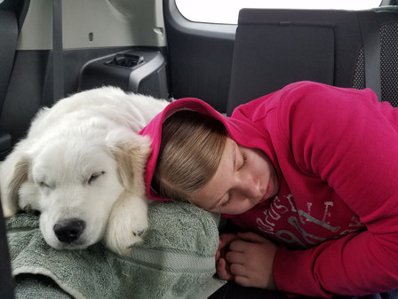 Alisa and Julias on the way to meet his new owner