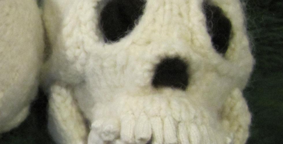 Daphne's Skull
