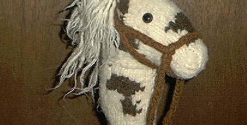 Laura's Pinto Hobby Horse