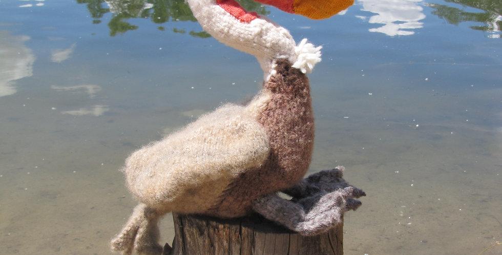 Bjorn the Brown Pelican