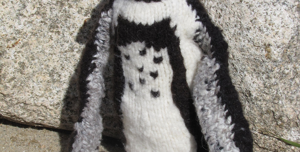 Maddy the Penguin
