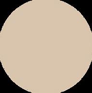 website circles honey beige pantone.png