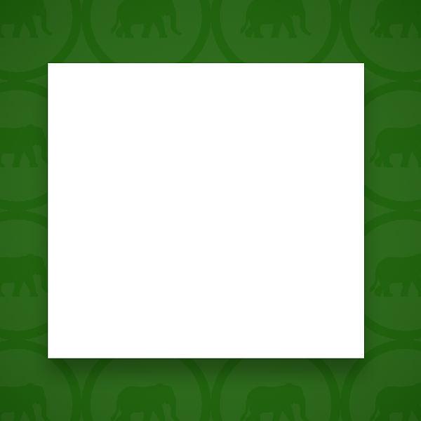 Elephant-Green.jpg