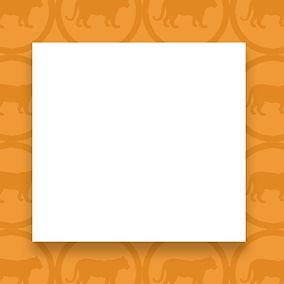 Tiger-Orange.jpg