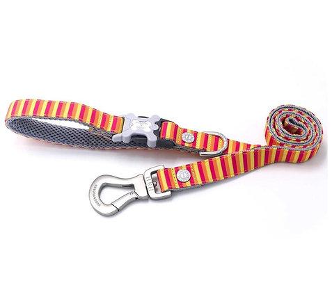 Hugo & Hudson Multi Coloured Stripe Leash XS/S or M/L