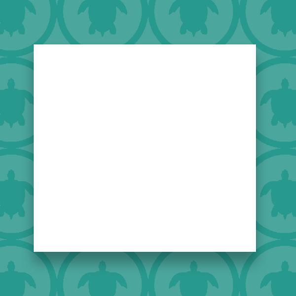 Turtle-Turquoise.jpg