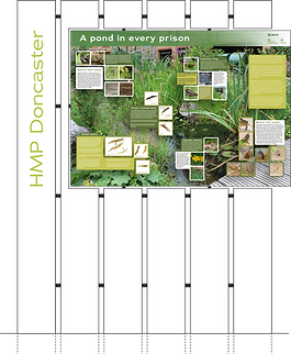 Pond Info Board.png
