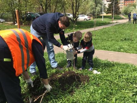 15 мая в Химках прошла эколого-патриотическая акция «Лес Победы».