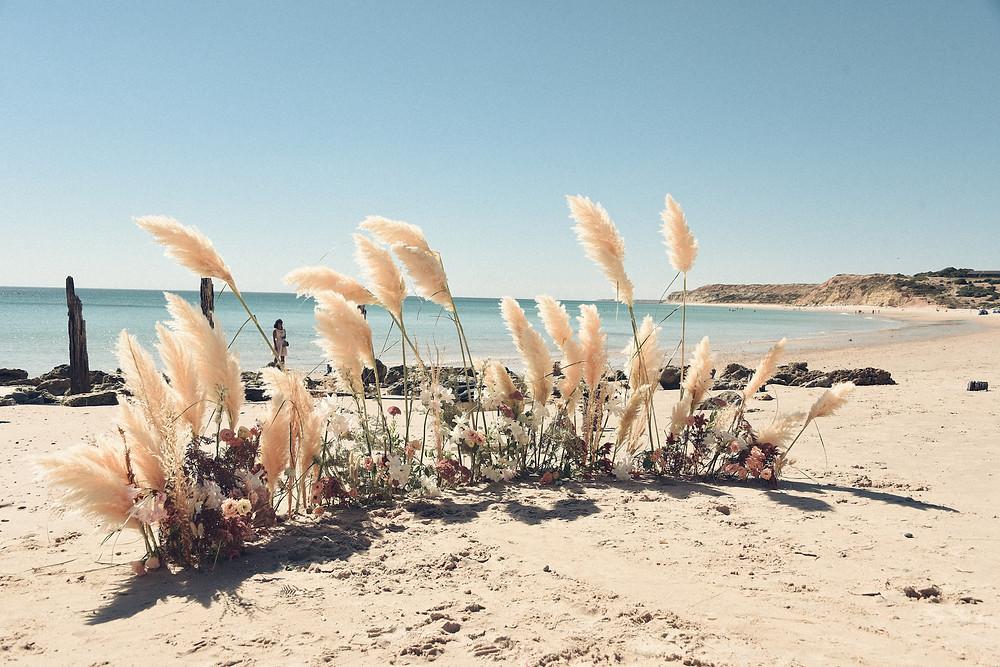 Carmen and Daniel's Beach and Winery Wedding