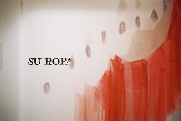 suropa12.jpg
