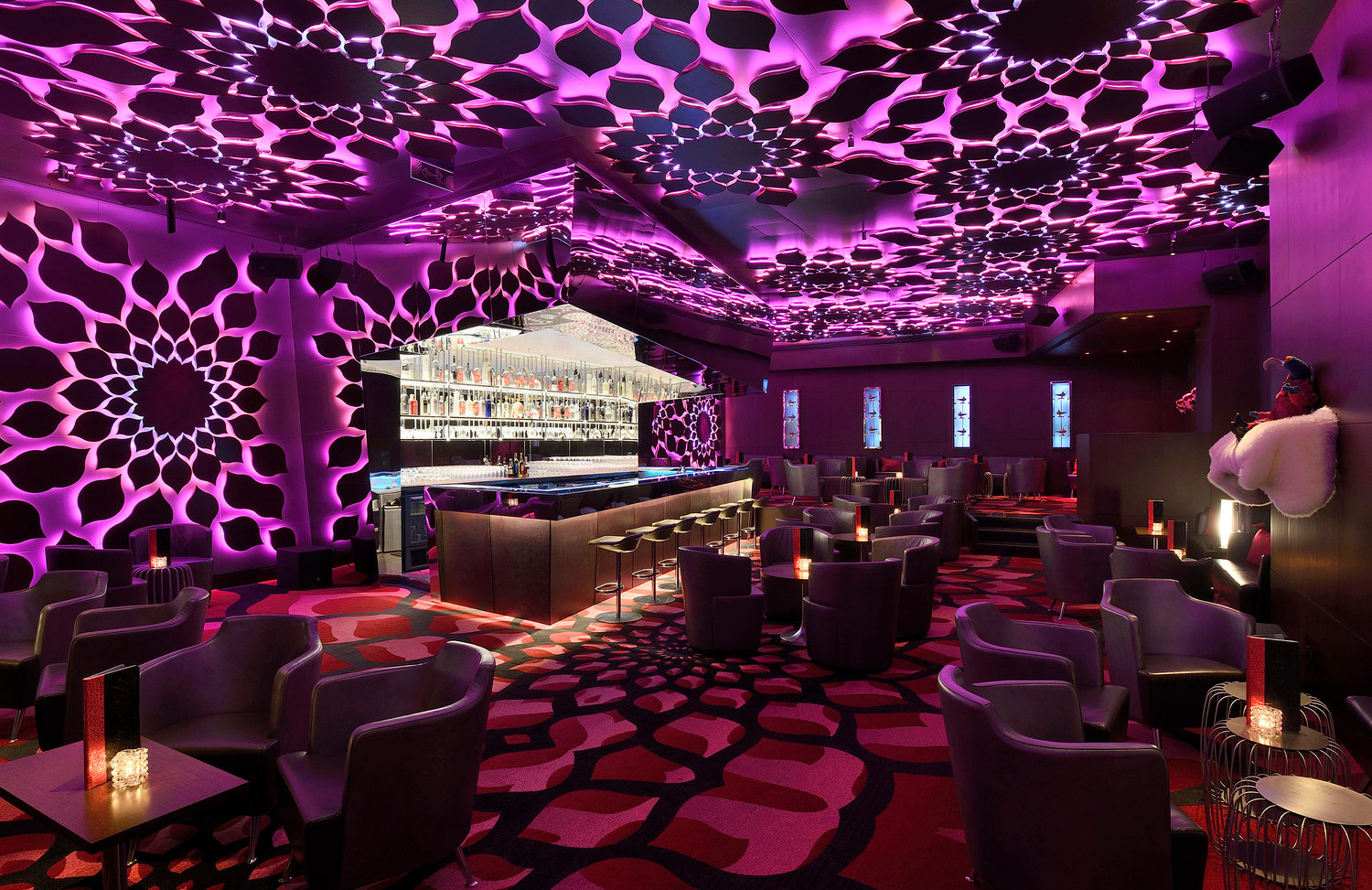dynaled-club-disco-lighting-examples-19.