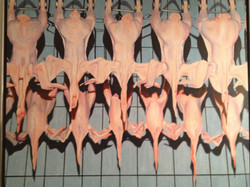 11 completely naked Swedish chickens