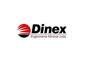 Dinex 5.JPG