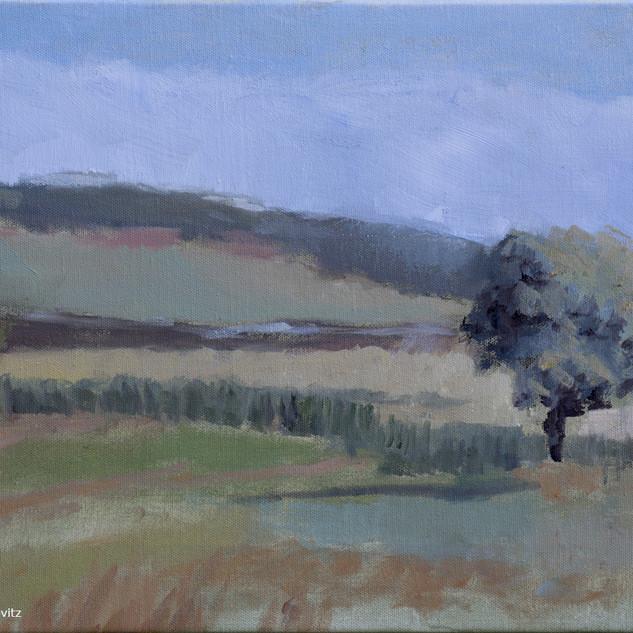 One Session Oil on Canvas30x40cmAlonim.j